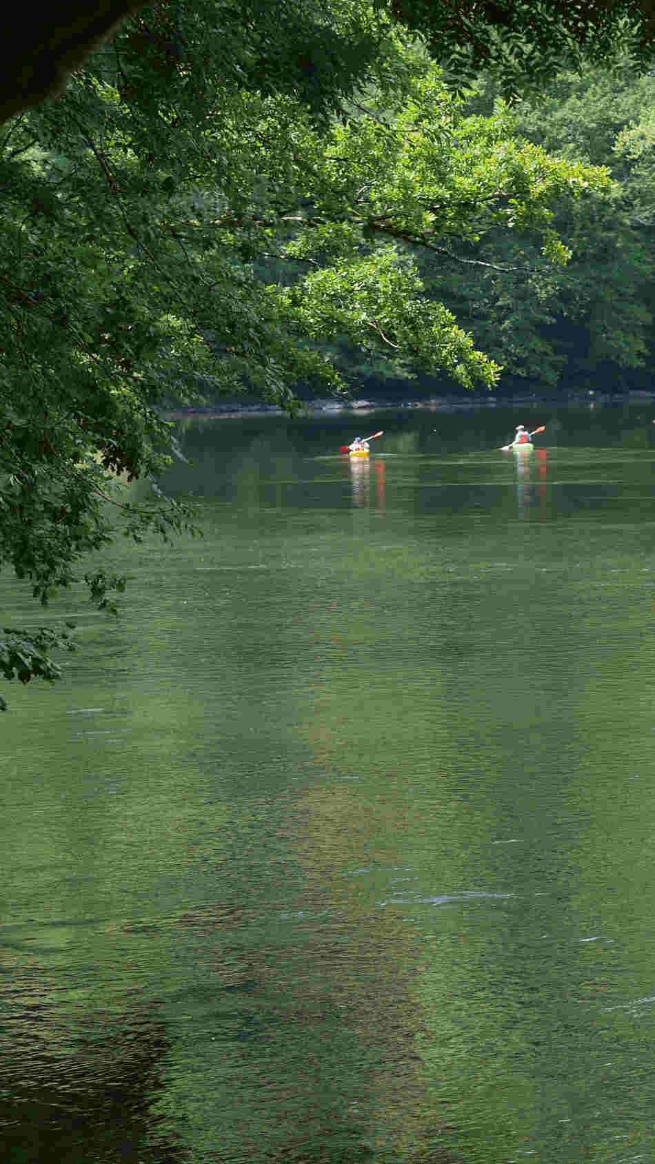 Dordogne Kayak